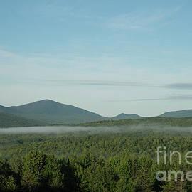 Alana Ranney - Mist Forming