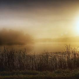 2201 - Mist On The Pond At The Side Of The Road by Sheryl Sutter
