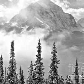 Mist Over The Rocky Mountains Black And White by Adam Jewell