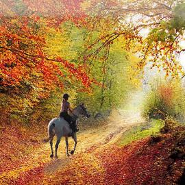 Misty Morning Autumn Horseback Ride by Sandi OReilly