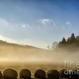 Thomas R Fletcher - Misty Country Morning