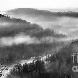 Misty Morning above Gauley River by Thomas R Fletcher