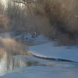 Kathy Carlson - Misty Morning in February