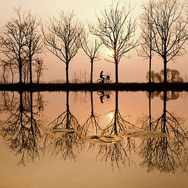 Roeselien Raimond - Misty Morning Magic