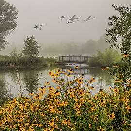 Misty Pond Bridge Reflection #1 by Patti Deters