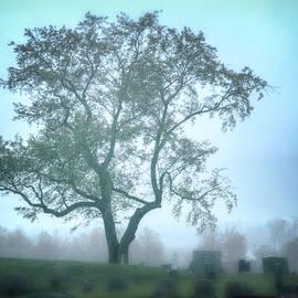 Misty Rest by Jim Love