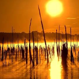 Bob Cuthbert - Misty Sunrise on the Reservoir