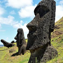Moai of Rapa Nui by Heidi Fickinger