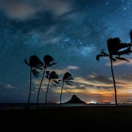 Sean Davey - Hawaiian Stardust