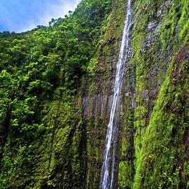 Michael Rucker - Molokai Waterfalls HAWAII