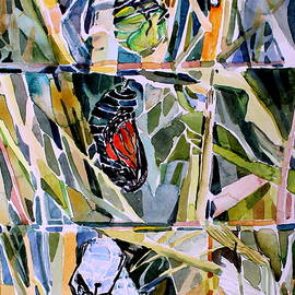 Monarch Butterfly Life Cycle by Mindy Newman