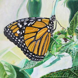 Monarch Portrait by Marilyn  McNish