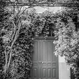 Monet's Green Door Garden, Giverny, Black And White by Liesl Walsh