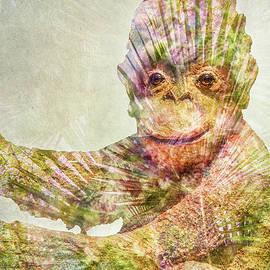 Pamela Williams - Monkey Man