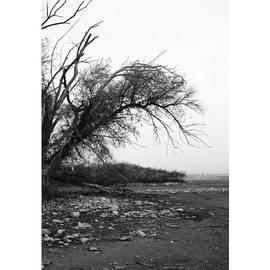 #monochrome #lake #landscape  #stausee