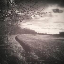 #monochrome #landscape  #field #trees