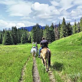 John Trommer - Montana High Country - Headed For The Barn