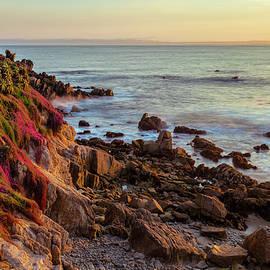 Jonathan Nguyen - Monterey Coast in Spring