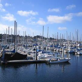 Monterey Marina Harbor California Usa by John Shiron