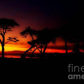 Rick Maxwell - Monterey Sunset