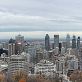 Montreal Skyline by Nicola Nobile