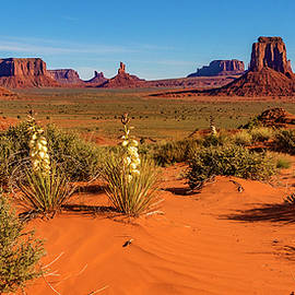 Monument Valley by Norman Hall