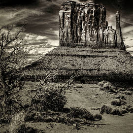 Roger Passman - Monument Valley Views No. 12