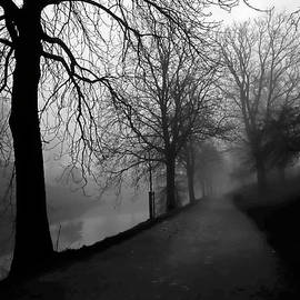 Moody and Misty Morning by Inge Riis McDonald