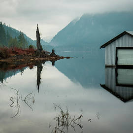 Moody Reflection by Windy Corduroy