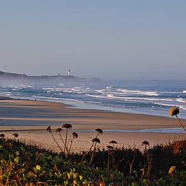 Moolack Beach by Ben Prepelka