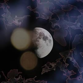 Lyn Perry - Moon Dreams