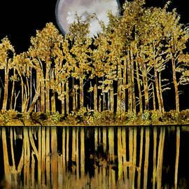 Moon Glow by Bill Dunkley