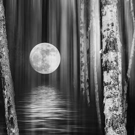 Moon light by Angela King-Jones