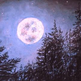 Moon Sight by Jen Shearer