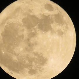 Moon by Utpal Datta