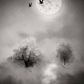 KaFra Art - Moonlight and Shadows