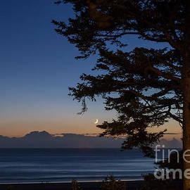 Moonlight at the beach by Paul Quinn
