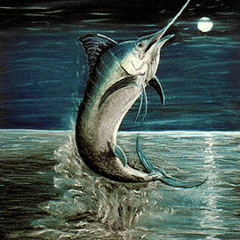 Moonlight Marlin by Elisabeth Dubois
