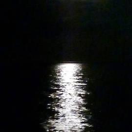 Moonlight Path by Barbie Corbett-Newmin