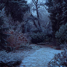 Jenny Rainbow - Moonlight Pathway. Enchanted Winter Garden