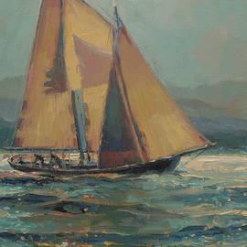 Moonlight Sail by Steve Henderson
