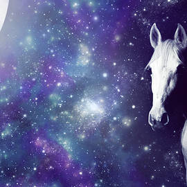 Moonlit Horse by Larah McElroy