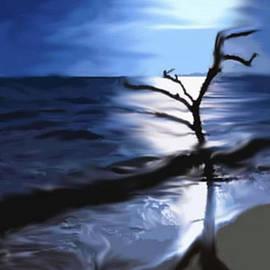 Moonlit On The Beach. by ArtTwoCreate LLC