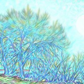 Joel Bruce Wallach - Moonlit Winter Trees In Blue - Boulder County Colorado