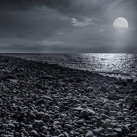 Moonstone Beach by Robin-Lee Vieira