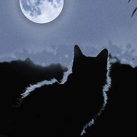 Moonstruck by Al G Smith