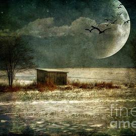 Moonstruck by Lois Bryan