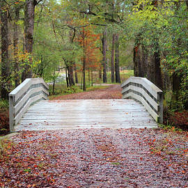 Moores Creek Bridge by Cynthia Guinn