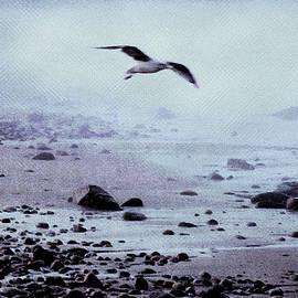 Morning at Back Beach Rockport Ma by Yuri Lev