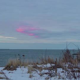 Barbara Blanchard - Morning color